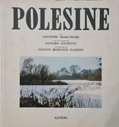 POLESINE