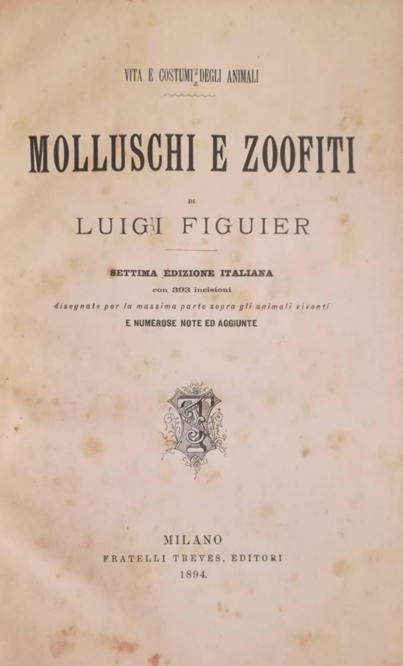 MOLLUSCHI E ZOOFITI