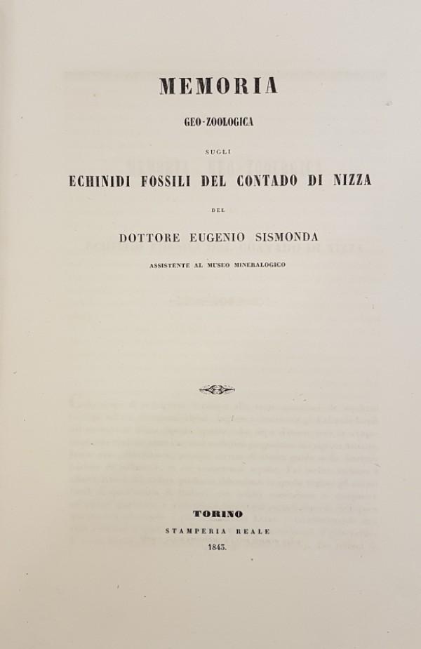 MEMORIA GEO-ZOOLOGICA SUGLI ECHINIDI FOSSILI DEL CONTADO DI NIZZA